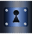 Keyhole on a metal grid vector image vector image