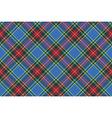 macbeth tartan kilt fabric textile diagonal vector image vector image