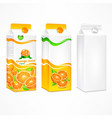 set of orange juice package vector image vector image