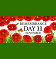11 november remembrance day poppy flowers vector image vector image