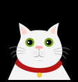 cute cartoon white cat icon hello spring vector image vector image