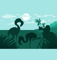 photographer photographs flamingo in nature vector image
