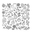 thanksgiving and autumn traditional symbols in vector image