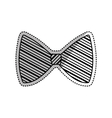 Isolated bow tie vector image