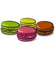 macarons cookies vector image