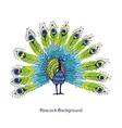 Peacock Card vector image vector image