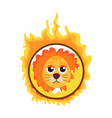 lion jumping through a ring of fire in the circus vector image vector image
