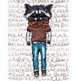 raccoon vector image