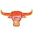 texas longhorn bull head vector image vector image