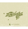 vintage green background with the words Natural vector image vector image