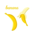 Banana fruits poster in cartoon style depicting vector image