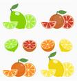 set of citrus orange lime lemon grapefruit vector image vector image