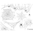 spider web set of elements vector image vector image