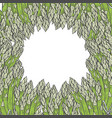 - asparagus collection vector image vector image