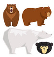 bears different style funny happy animals vector image vector image