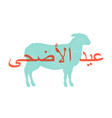 kurban bayrami lamb sheep concept design of vector image vector image