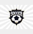 modern professional soccer logo for sport team vector image vector image