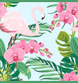 pink orchid flamingo tropical leaves pattern blue vector image vector image