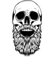 silhouette human skull with beard vector image vector image