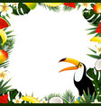 summer tropical frame vector image vector image