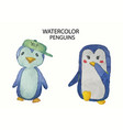 watercolor collection cute hand drawn penguins vector image vector image