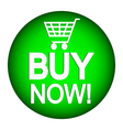 Buy button vector image