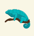 blue chameleon on branch vector image vector image