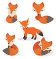 cute foxes cartoon set in different poses vector image vector image