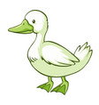 green duck on white background vector image vector image