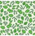 green hergbs seamless pattern vector image