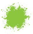 green ink splatter vector image