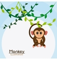 Monkey cartoon animal design vector image