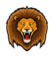 sign of a lion vector image vector image