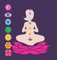 symbols seven chakras vector image