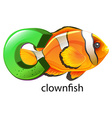 A letter C for clownfish vector image vector image