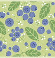 blueberry seamless pattern leaves flowers shabby vector image vector image