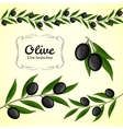 Collection of olive branch black olives vector image vector image
