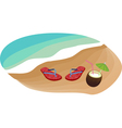 flip flops and coconut vector image