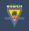 hawaii summertime - concept vector image