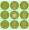 insect icons set dor-beetle and firefly firebug vector image vector image