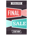 social media final sale banner vector image vector image