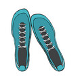 sport sneakers footwear vector image vector image