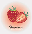 strawberry fruits and vegetables vector image