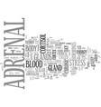 adrenal fatigue text word cloud concept vector image vector image