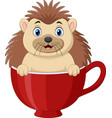 cartoon happy hedgehog sitting in a red cup vector image vector image