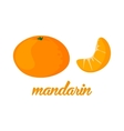 Mandarin fruits poster in cartoon style depicting vector image vector image