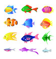 set of bright fish isolated on the white vector image vector image