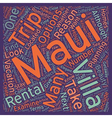 Why You Should Stay At A Maui Villa text vector image vector image