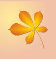 autumn chestnut leaf vector image vector image