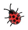 cute ladybug isolated icon vector image
